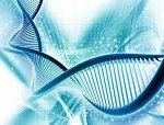 le protocole folfox, une chimiothérapie particulière pour combattre le cancer