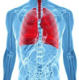 Cancer de la plèvre : Le point sur ces tumeurs malignes