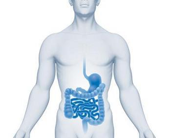 Qu'est-ce qu'une tumeur stromale ? Une forme rare de cancer digestif
