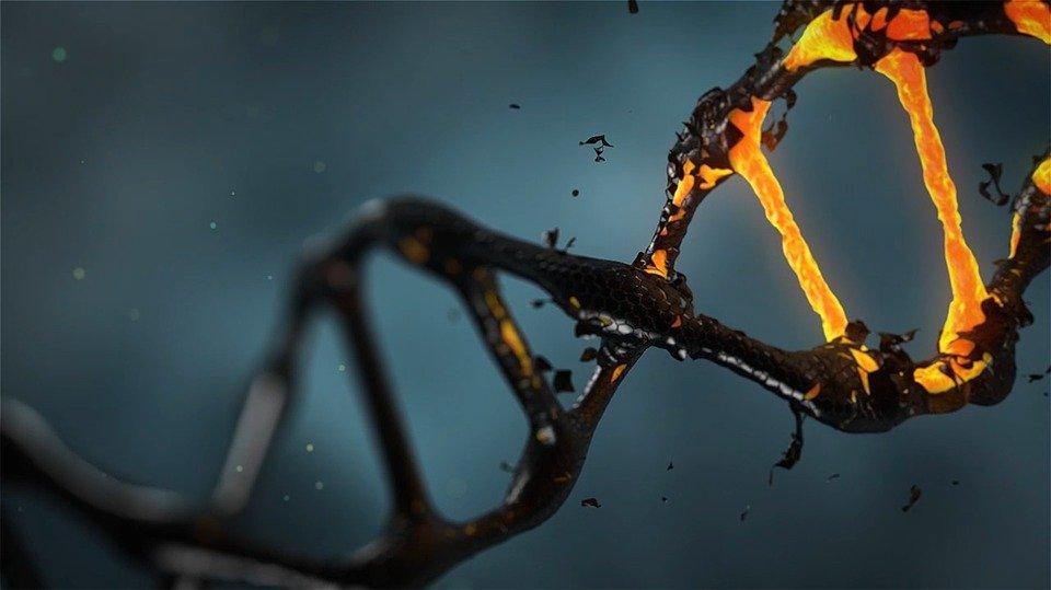 Définition : Cancer primitif, que faut-il savoir ?
