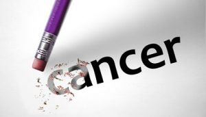 herceptine_cancer