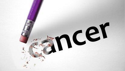 Qu'est-ce que l'Herceptin ® (trastuzumab) dans le traitement du cancer ?