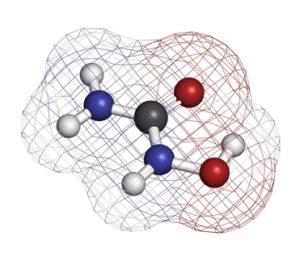 hydroxyurée_definition