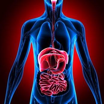 Quels sont les cancers digestifs ?