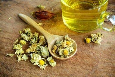 chrysanthellum-varice