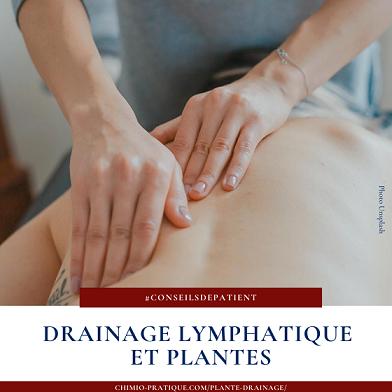 Quelle plante utiliser pour le drainage lymphatique ?